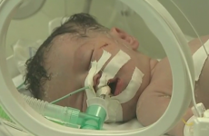 Baby delivered from dead mother in Gaza