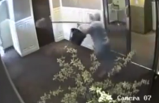 Grandmother chases off purse thief with mop and bucket