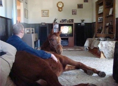 Could you pipe down? We're watching telly.