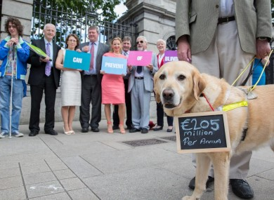 Orva the dog with Senator Conway living with sight loss asks the Government to implement a long-awaited strategy to eradicate preventable blindness.