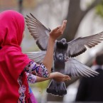 A girl feeds pigeons in Company Gardens a heritage site located in the city centre of Cape Town, South Africa.<span class=