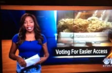 Reporter quits job live on air after revealing herself to be a marijuana activist