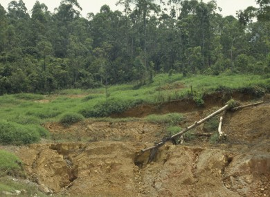 FILE: Soil erosion caused by deforestation in the Amazon.