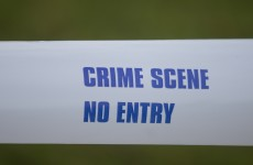 Man (20s) dies after knife attack in Santry