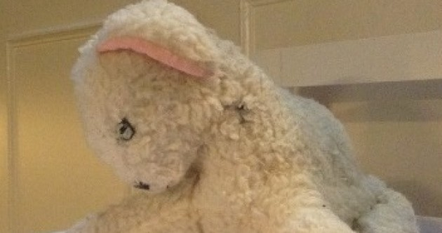 From old to new: My childhood teddy Lamby pays a visit to the Doll and Teddy Bear Hospital