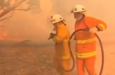 Dozens of homes feared destroyed by raging fires in South Australia