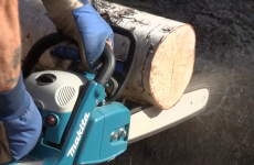 Australian judge rules that 'gaping' chainsaw wound is no excuse for drink-driving