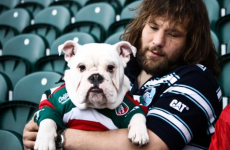 Dog bite means Castrogiovanni likely to miss Italy's Six Nations clash with Scotland