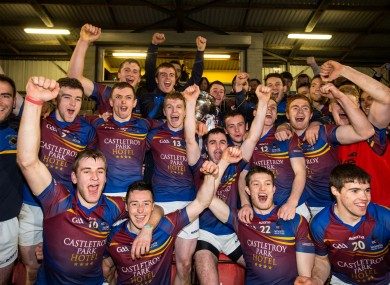 UL players celebrate after their Fitzgibbon Cup victory.