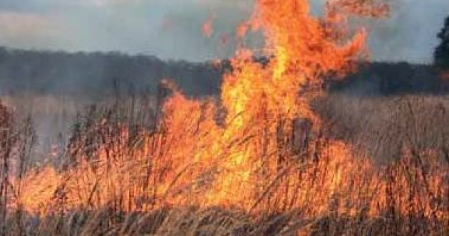 Minister accused of being 'clueless' over wildfires
