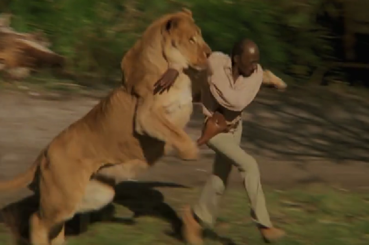 70 People Were Injured While Filming This Movie With 100 Untamed Lions