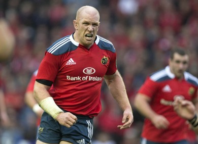 Munster's Paul O'Connell features in the best European XV team.