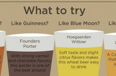 10 handy infographics that will help you become a drink expert