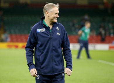 Ireland's Head coach Joe Schmidt says he is committed to the team for the long term.