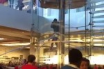 "Man walks into Apple store, draws sword, shouts ""I just want an iPhone"""