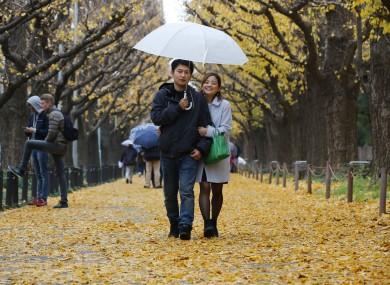 A couple walks under gingko trees at Jingu Gaien in Tokyo.
