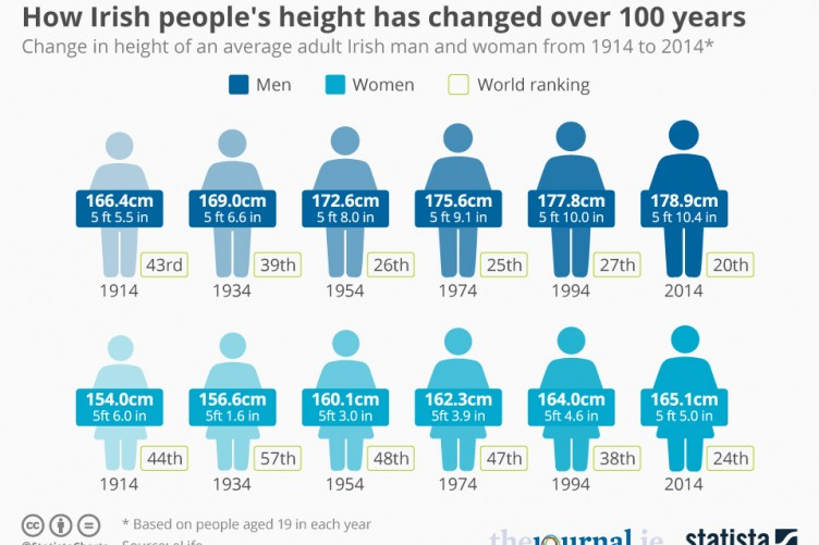 male adult Average height