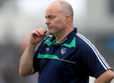 Limerick hurling coach Anthony Daly.
