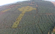 This incredible drone footage of a Celtic cross in a Donegal forest is going viral