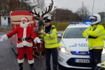 Gardaí pulled over a rather suspicious character in Kildare this morning