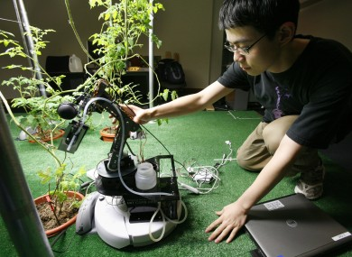 A student works with a robot gardener in MIT's Artificial Intelligence Lab