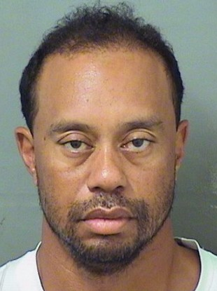 The mugshot of Woods, provided by the Palm Beach County Sheriff's Office.