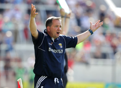 Wexford manager Davy Fitzgerald during his side's defeat to Waterford.