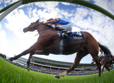 Johannes Vermeer: best of the six Irish-trained chances?