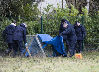 Garda search teams at the scene of the discovery in an isolated field on a farm at Walterstown on the Kildare-Meath border