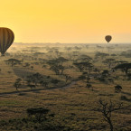 Whether you're in a hot-air balloon over the savannah or at eye level on the roads below, the Serengeti National Park is sure to be a wild experience.<span class=