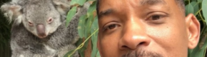 Will Smith narrating his trip to the zoo on Instagram is just the purest thing