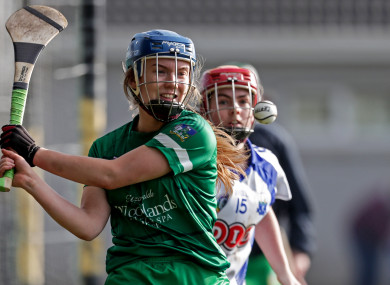 Limerick's Jane Wilson in action against Waterford earlier.