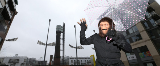 The launch of the Dublin Sci-Fi Film Festival with original Planet of the Apes character Cornelius, in the Light House Cinema , Dublin.