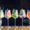7 impressive things all gin fans should know, according to an expert