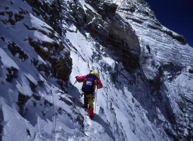 Dawson Stelfox successfully reached Everest's peak in 1993.