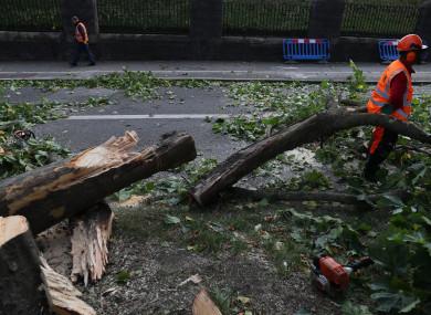 A fallen tree on Finglas Road near Glasnevin Cemetery.