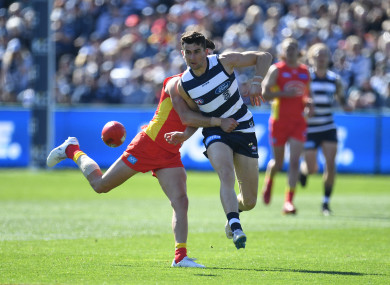 Mark O'Connor in action for Geelong in the AFL in August.