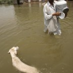 A man wades through floodwaters in Sajawal near Hyderabad, Pakistan on 1 September, 2010. Pakistan's economic growth will plunge 2 percentage points because of the floods and lead to