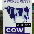 A reader of TheJournal.ie sent in this poster belonging to a moo-sterious independent candidate...