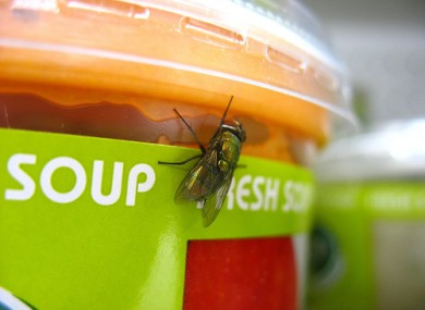 Waiter, waiter! There's a fly in my soup...