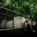 Minister Jimmy Deenihan keeps clear as he releases red kites into the wild in Donabate, Dublin (Julien Behal/PA Wire)