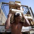 Peruvian workers labor to harvest hand-picked grapes for distribution (The Canadian Press / Mark Samala)