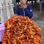 A crab vendor waits for customers in Taungbyone, central Myanmar (AP Photo/Khin Maung Win)