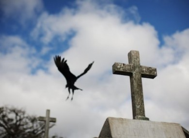 A vulture flies behind a tomb at Guatemala City's main cemetery