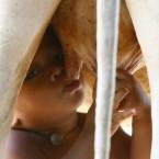 Tha Sophat suckles from a cow in Koak Roka village, Siem Reap province, Cambodia (AP Photo/Heng Sinith)