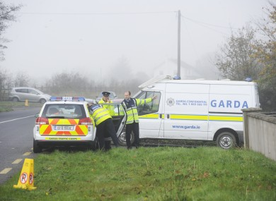 Gardaí in Co Meath at the scene of the discovery of Noonan's remains.