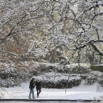 People enjoy the snow in St. Stephens Green in Dublin.
