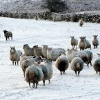 A winter scene from the Glens in Co Antrim. (Paul Faith/PA Wire)