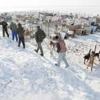 Inmates from the neighboring Jilava prison carry shovels at a snowed in stray dog shelter in Glina, Romania. (AP Photo/Vadim Ghirda/PA Images)