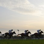 Panorama: Chilworth Screamer powers to victory in the Digibet.com Standard Open National Hunt Race at Fontwell.<span class=